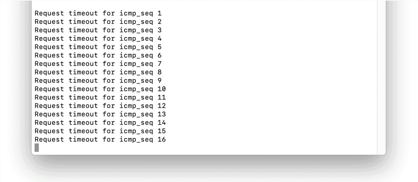 Ping result on Terminal.