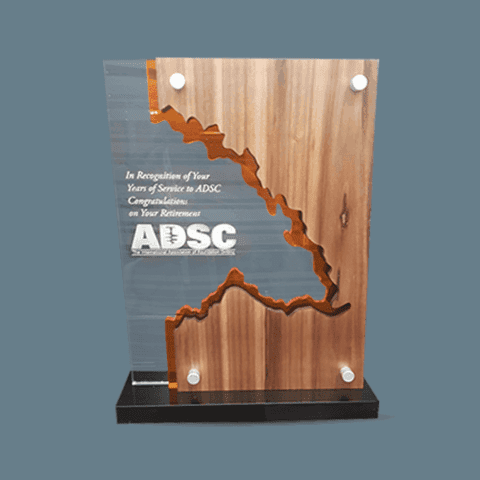 MODERN WOOD AND GLASS TROPHY