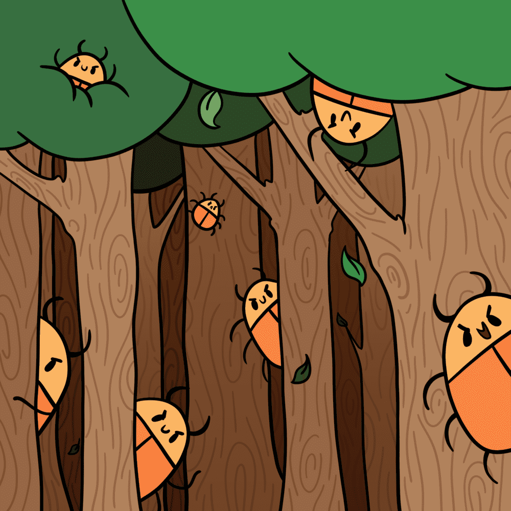 Bugs on trees in a forest