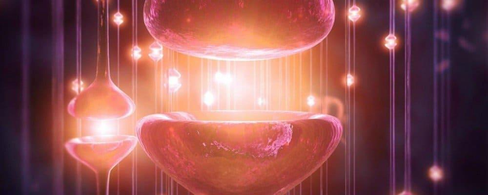 Dopamina la sostanza che regola il piacere
