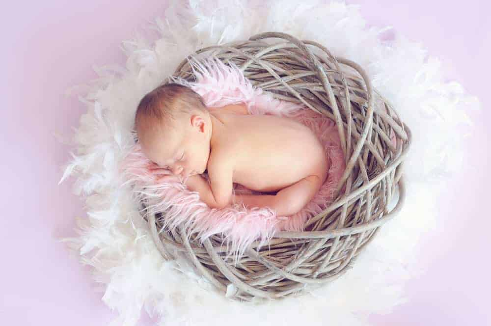 Newborn Photo Ideas color theme