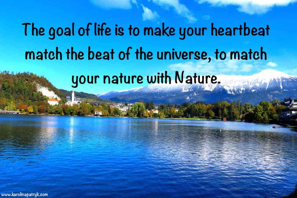 the-goal-of-life-is-to-make-your-heartbeat-match-the-beat-of-the-universe-to-match-your-nature-with-nature