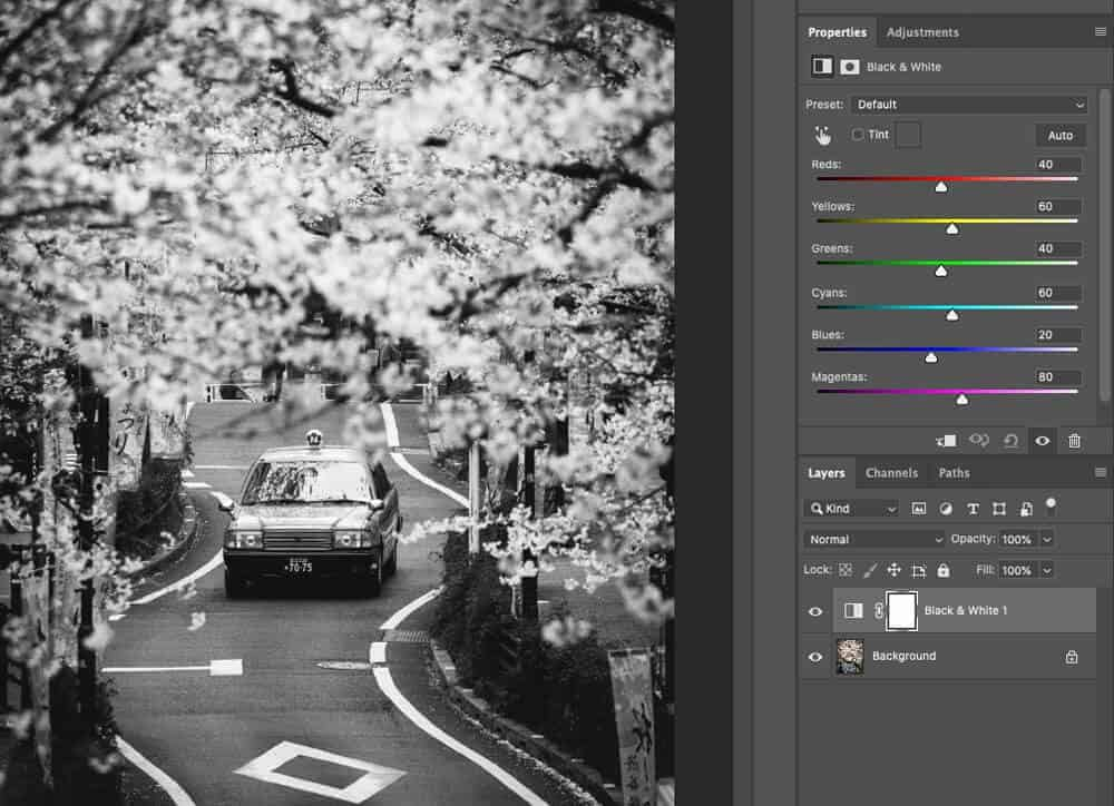 Black and White Adjustment Layer