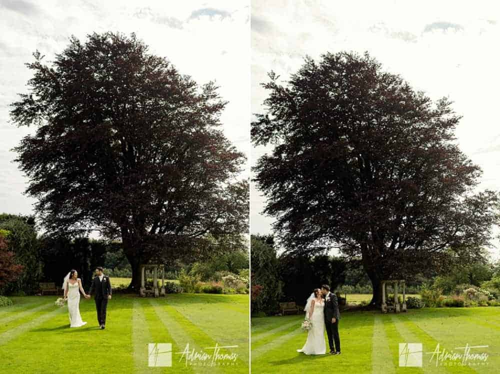 Bride and groom with tree.
