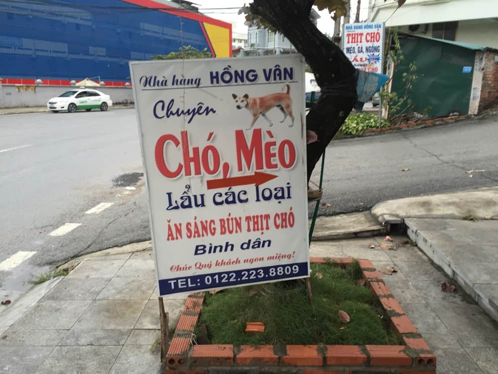 Cho Meo dog meat in Interesting Vietnamfacts   Vietnam Sign