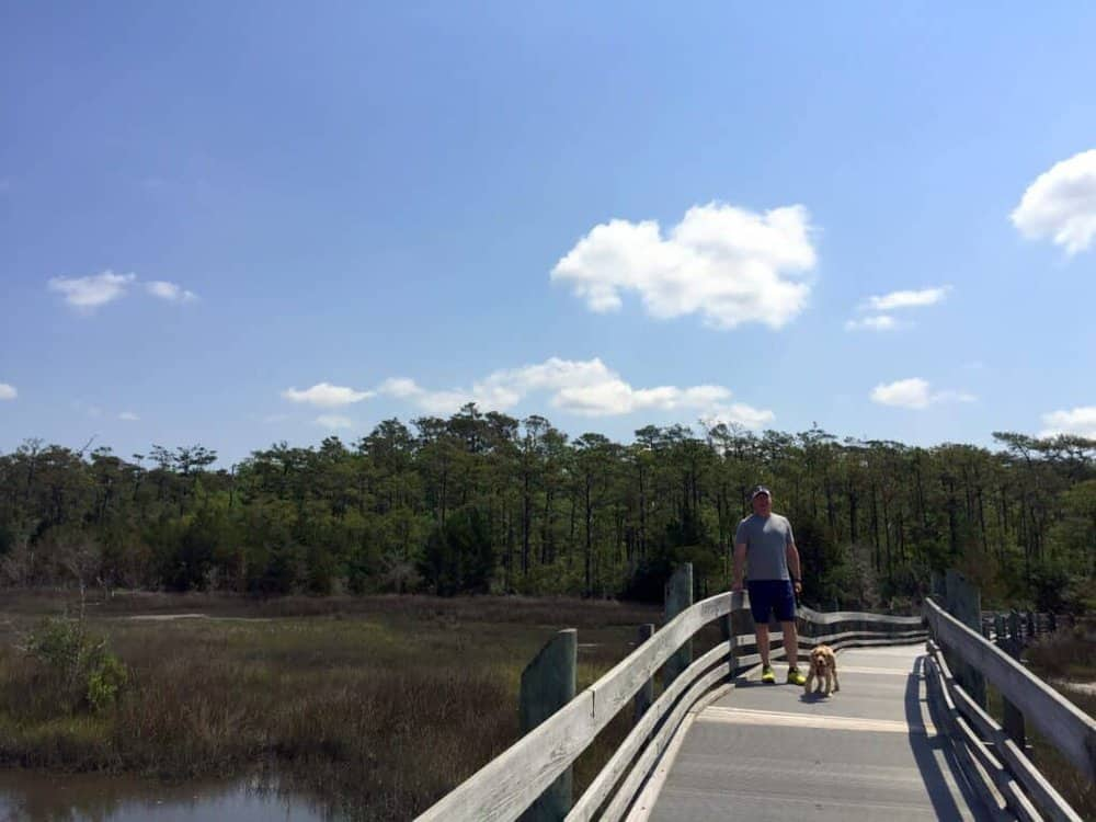 north carolina park marsh boardwalk