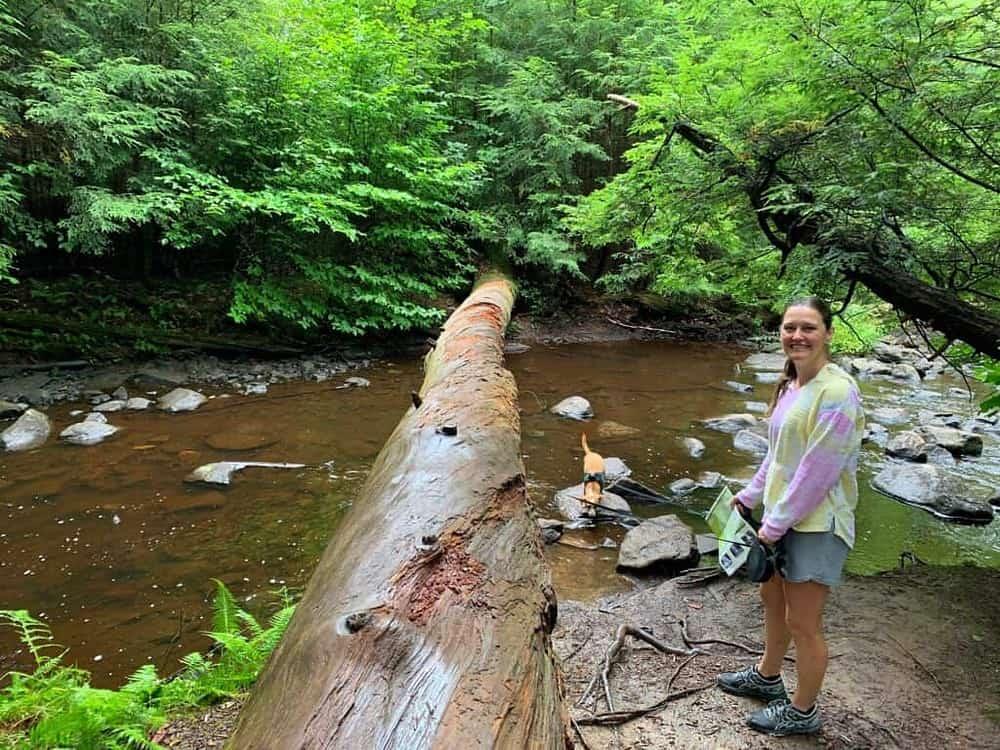 ricketts glen state park dog dip