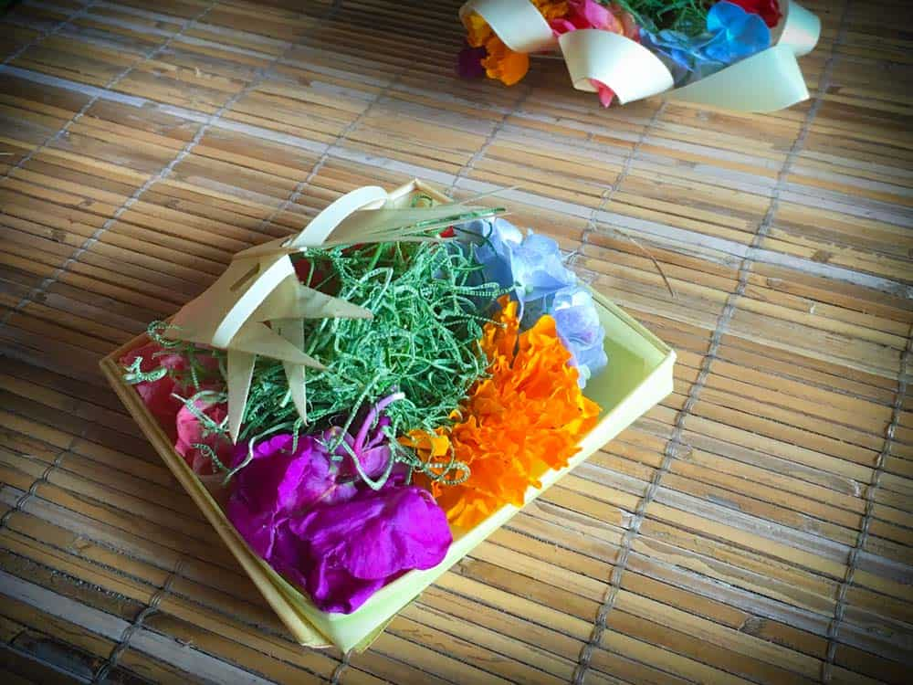 A traditional Balinese Hindu offering made as part of an excursion tour of Ubud activities. A small square container made with palm leaves, with pink, purple, orange, and blue flowers, along with green moss.
