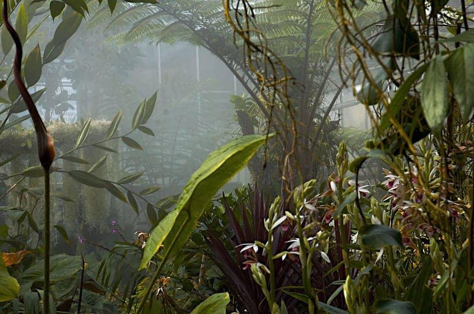 greenhouse mist sprayer