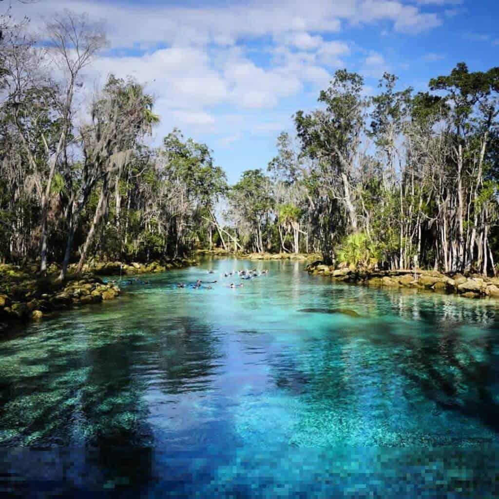 Crystal River Wildlife Refuge