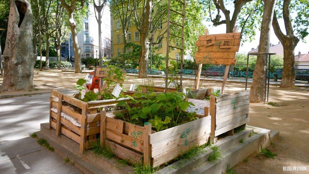 Agriculture urbaine à Lyon - Blog In Lyon