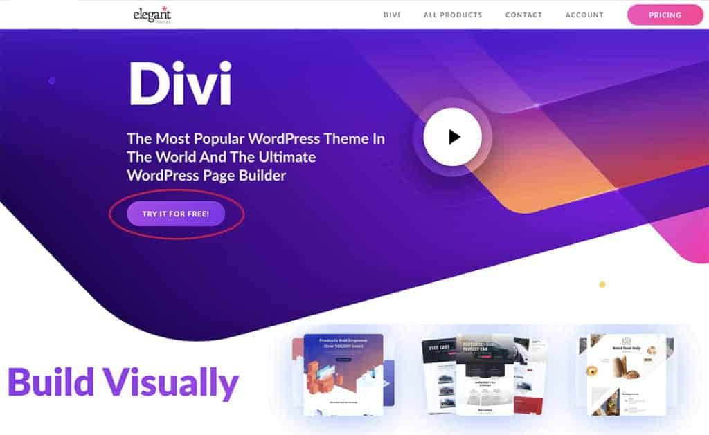 divi elegant themes for motion artists