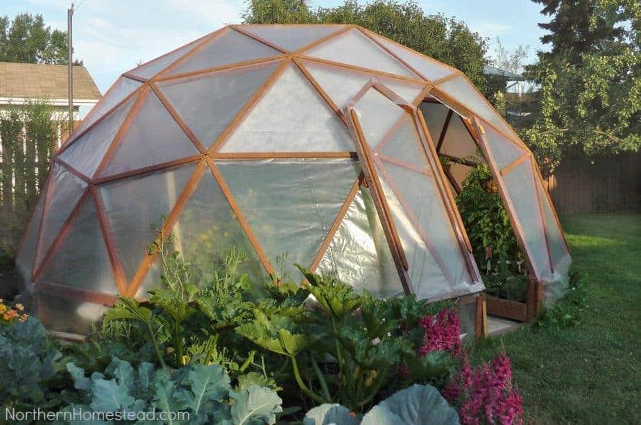 diy greenhouse how