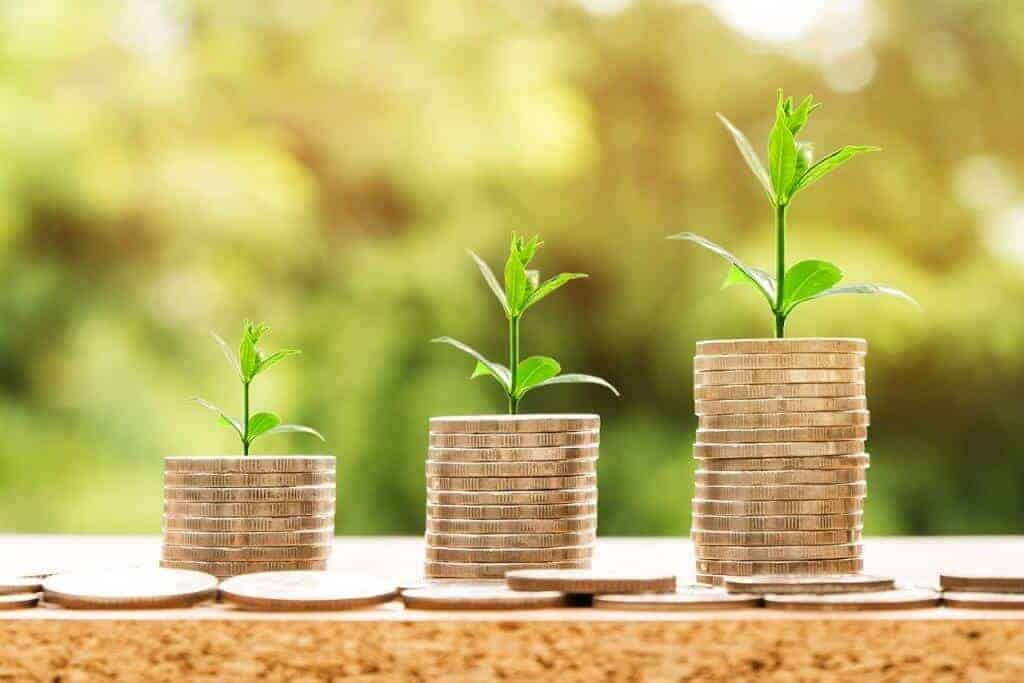 what is a stock dividend