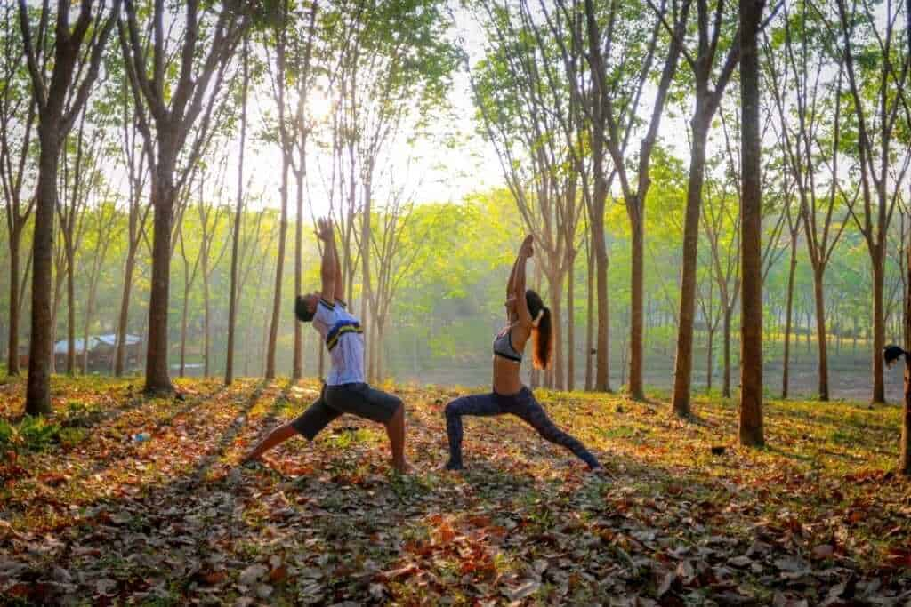 yoga in phuket forest