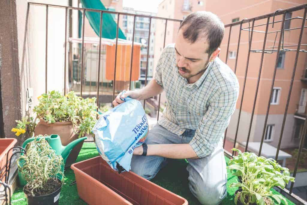 growing food in pots on the patio is how you can grow your own food easiest when living in an apartment