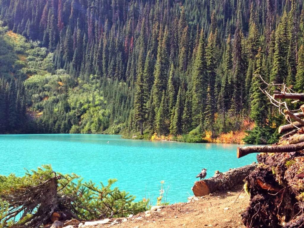 Work and Travel - Joffre Lakes, British Columbia, Kanada