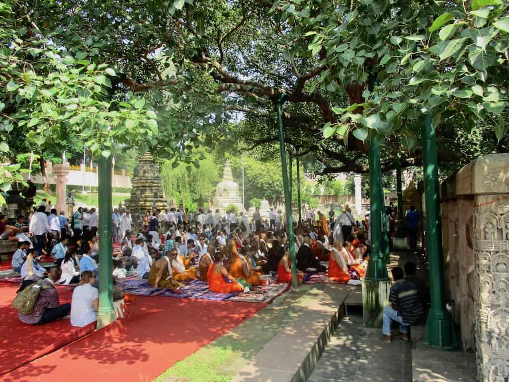 Buddhismus Indien: Besucher unter dem Bodhi Tree in Bodghaya, unter dem Buddha Erleuchtung erlangte