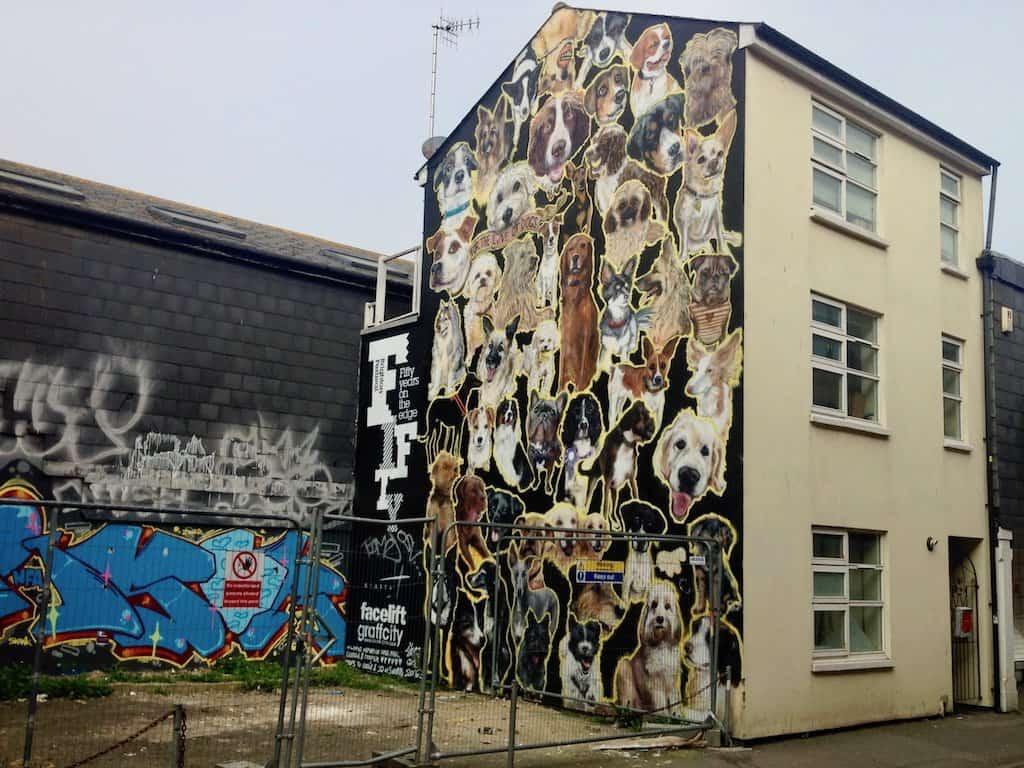 Brighton Sehenswürdigkeiten: Graffito in der Kensington Street