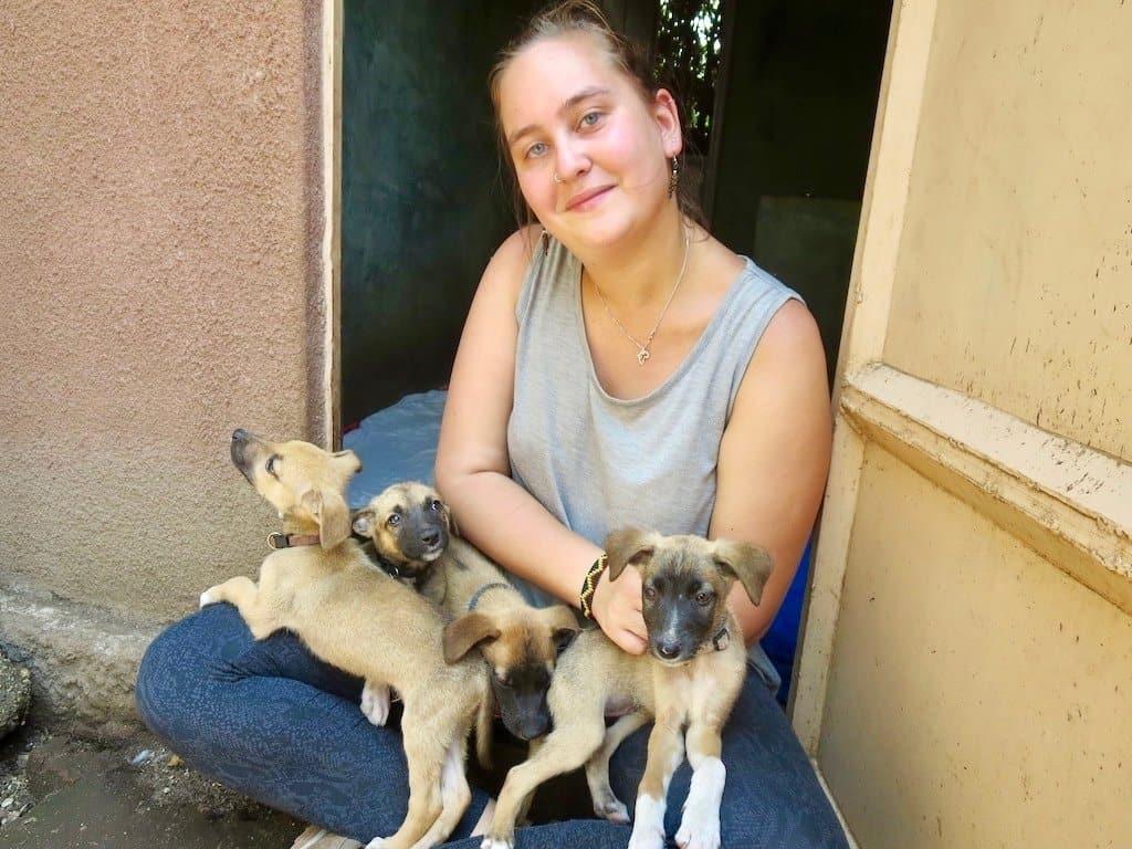 Auswandern nach Tansania: Tizia mit Hunden