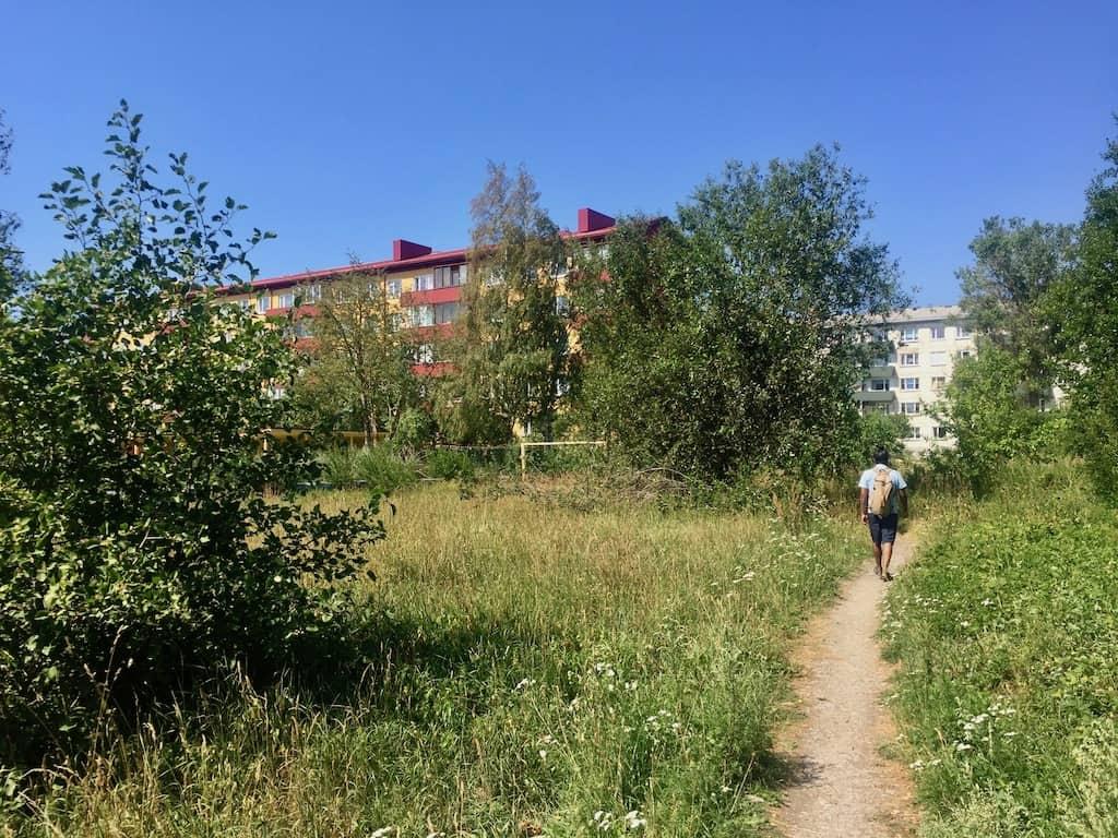 An manchen Ecken in Paldiski holt sich die Natur zurück, was ihr gehört