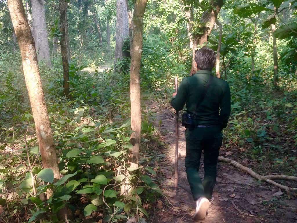 Wanderung durch die Salwälder
