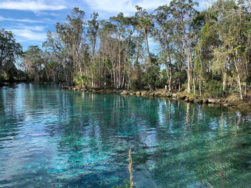 Crystal River Wildlife Refuge @cornejophotography