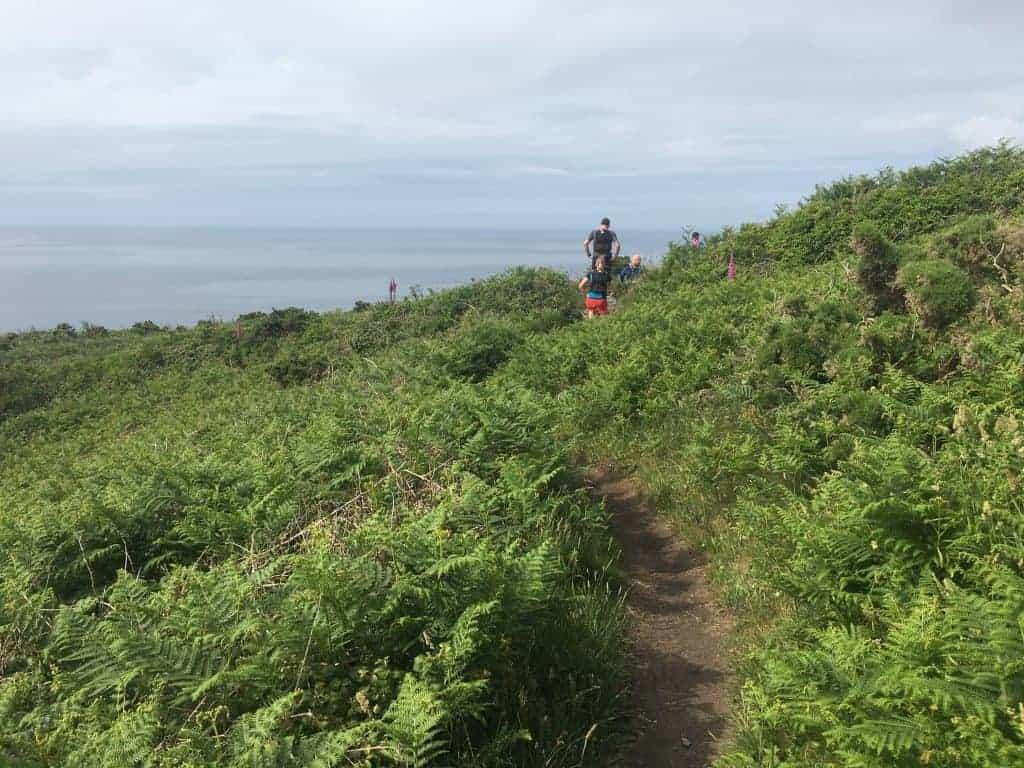Einer der Trails