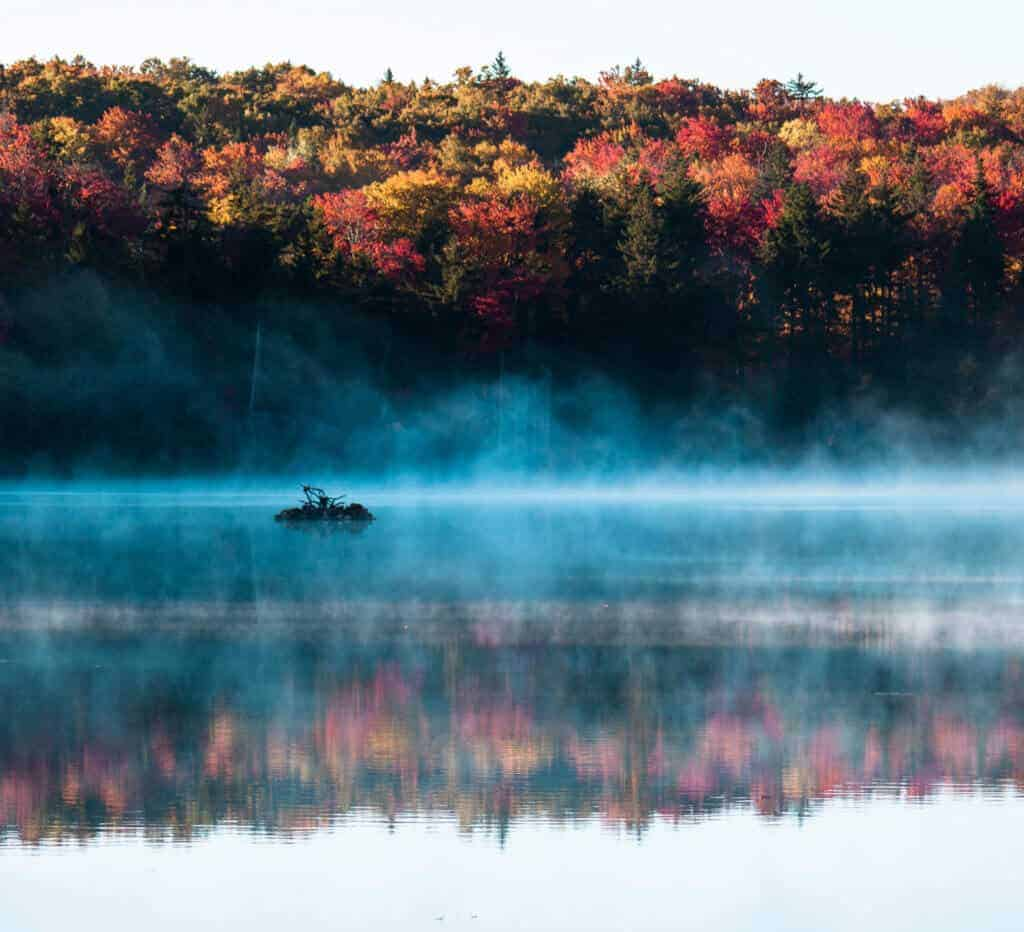 A fall scene at Woodford State Park in Vermont. Fog lifts off the pond and is surrounded by colorful trees.