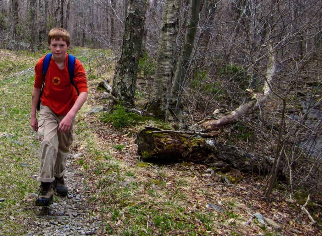 A boy hikes through the woods with a blue daypack.