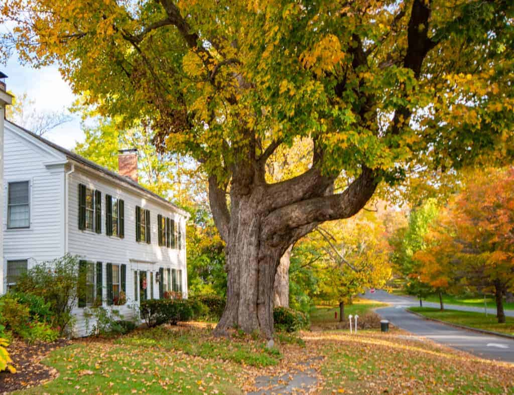 A fall scene in Bennington, Vermont