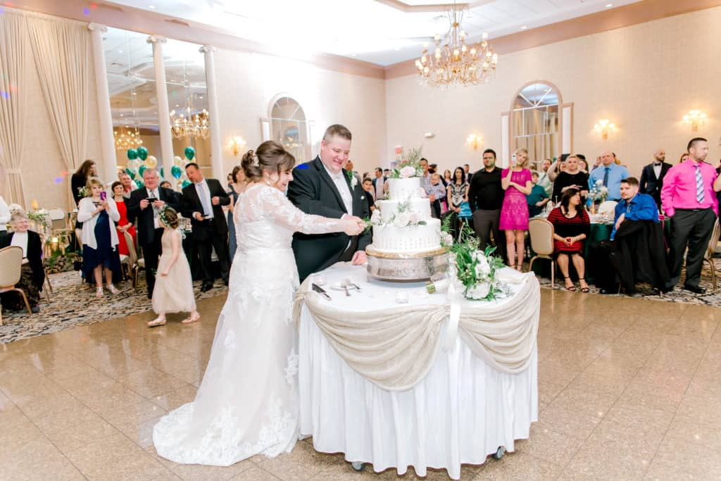 meridian banquets wedding, wedding photographer in Chicago, cake cutting,