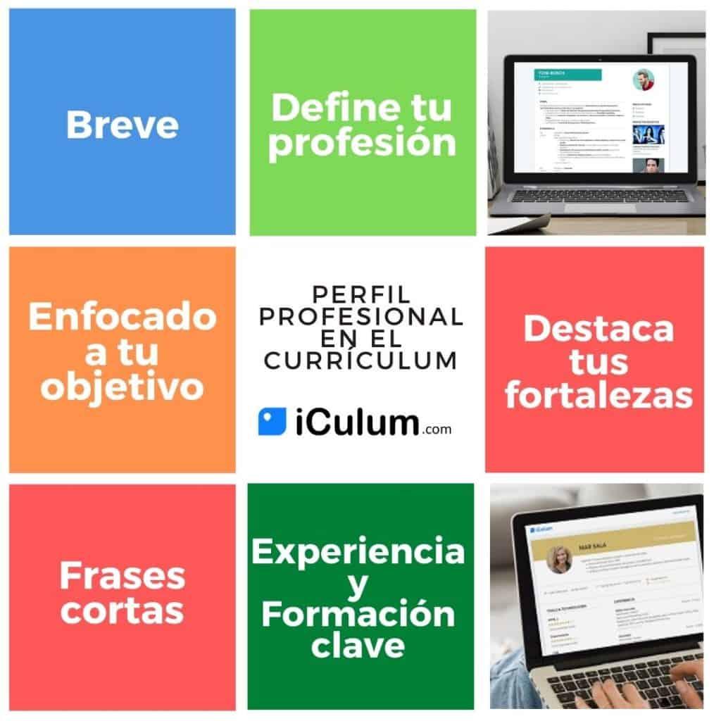 Perfil profesional en el currículum infografía iCulum