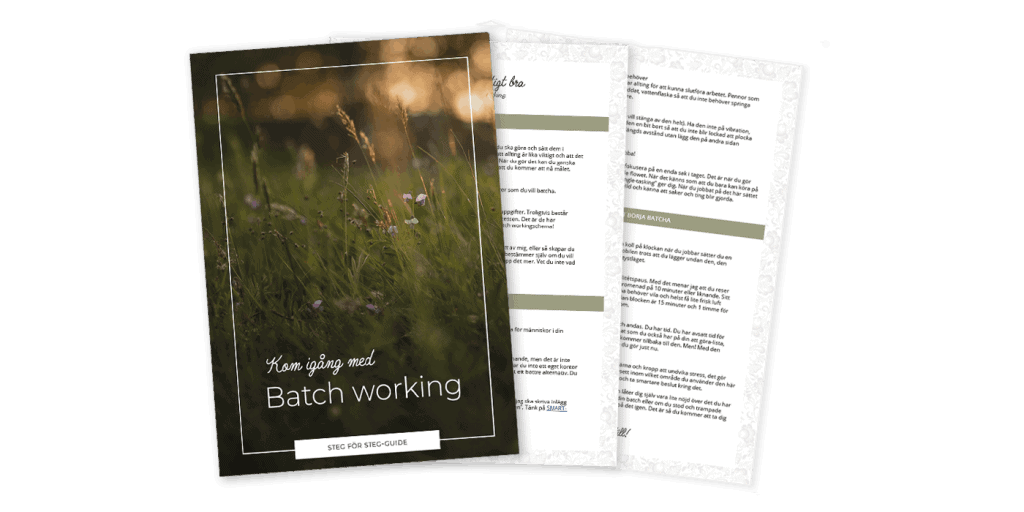 Exempel Guide Batch working