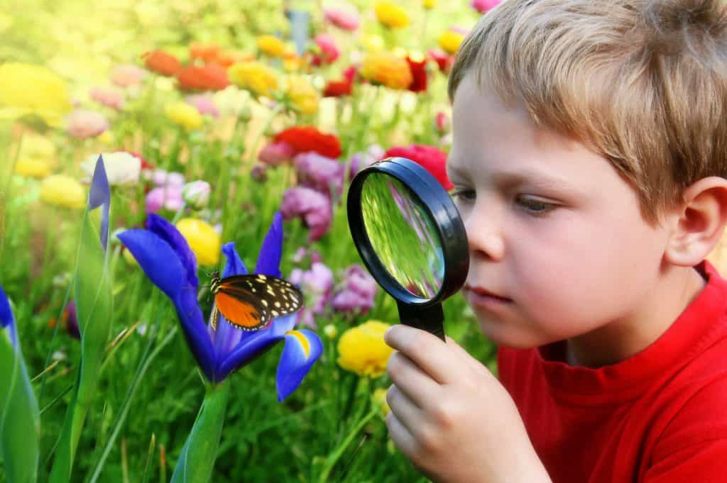nurture curiosity in children