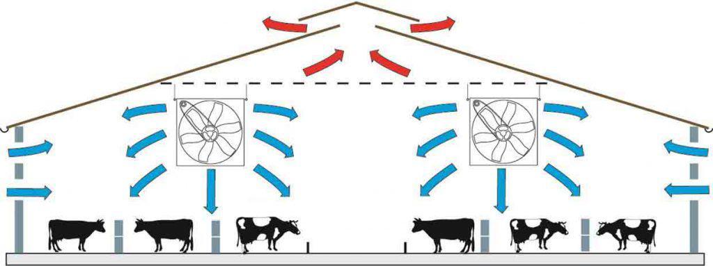 Belüftungssystem für Viehbestände