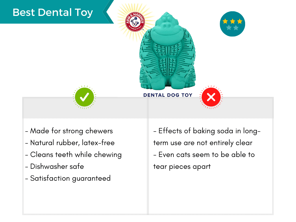 Product card featuring the best dental dog toy.