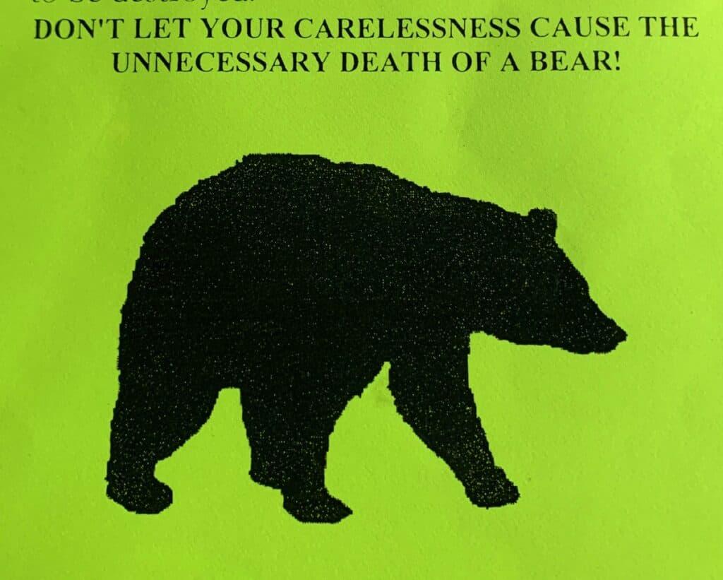 deep creek lake state park bear alert