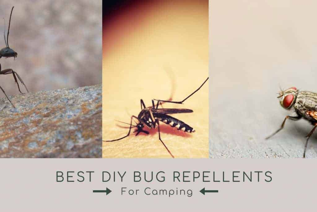 bug repellents for camping