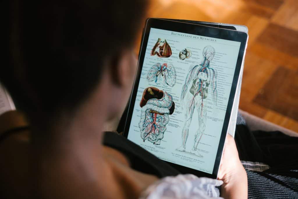 Professionele fysio voor jou, online en handsfree!