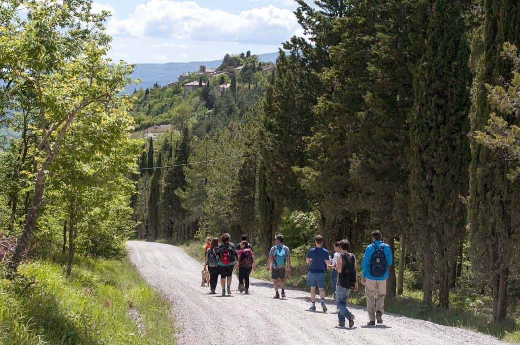 gruppo di trekking