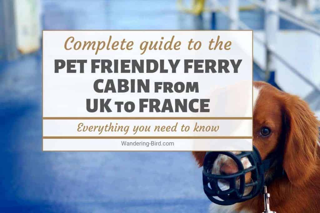 Taking a ferry to France with dog on Brittany Ferries Pet Friendly Cabin
