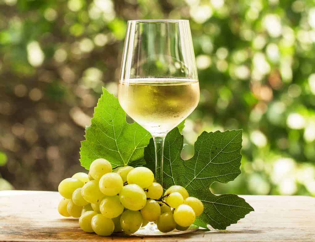 Riesling Wine Taste Description & Grape Variety Guide | Winetraveler.com