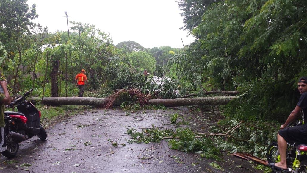 Carretera obstaculizada en Gaspar Hernández