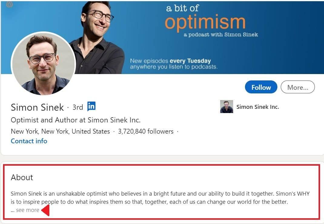 Linkedin iCulum extracto profesional