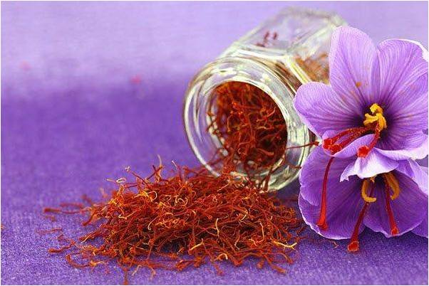 Nguyên Tắc Và Cách Bảo Quản Saffron