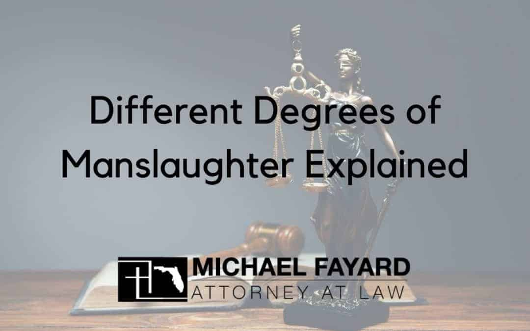 degrees of manslaughter explained sarasota county