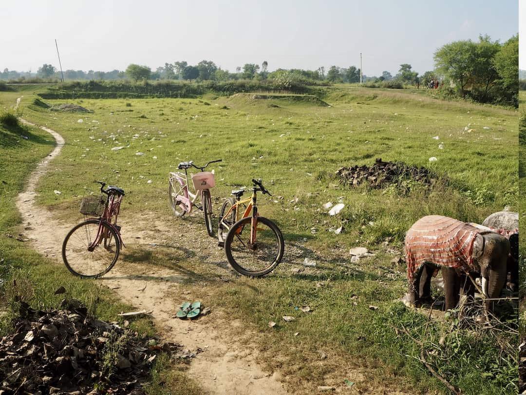 Fahrräder in Lumbini, Nepal, Geburtsort von Buddha