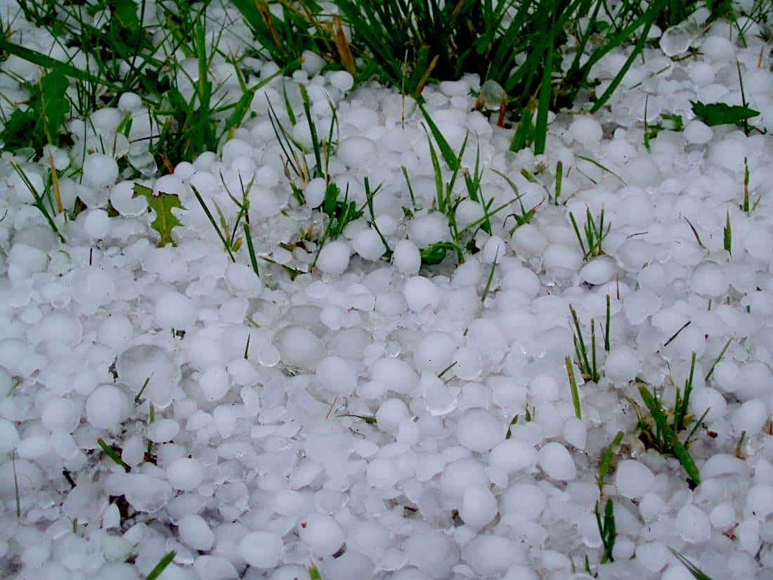 Hail Damage Insurance Claims