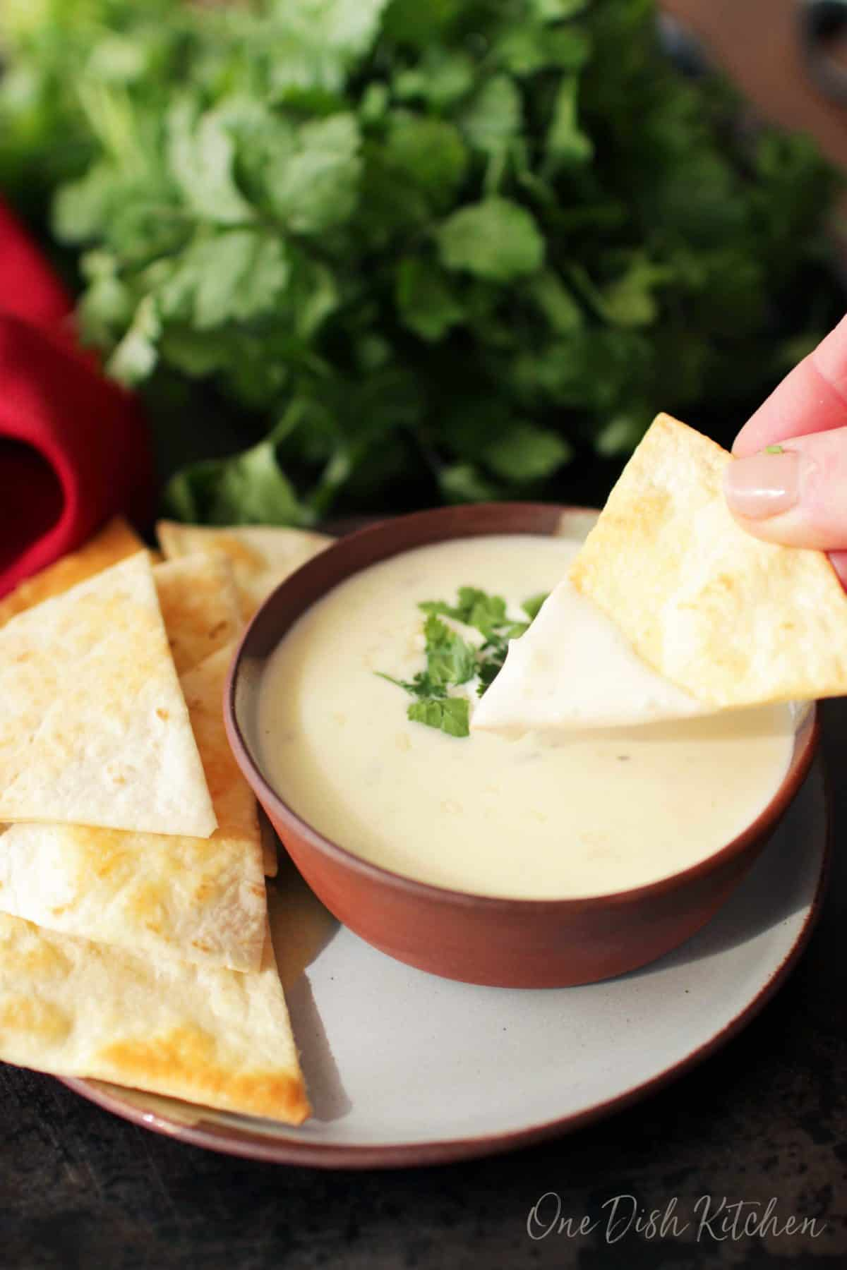 Dipping the edge of a homemade tortilla chip in a bowl of queso.